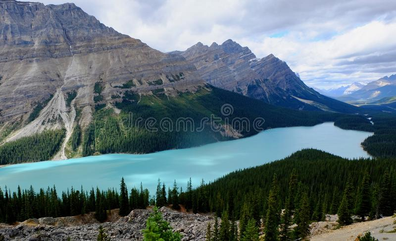 den alberta banff Kanada laken lokaliserade nationalparkpeyto