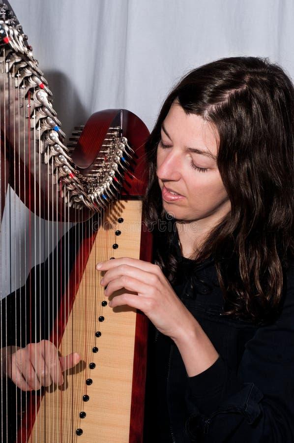 Den allvarliga musiker plays den irländska harpan royaltyfri bild