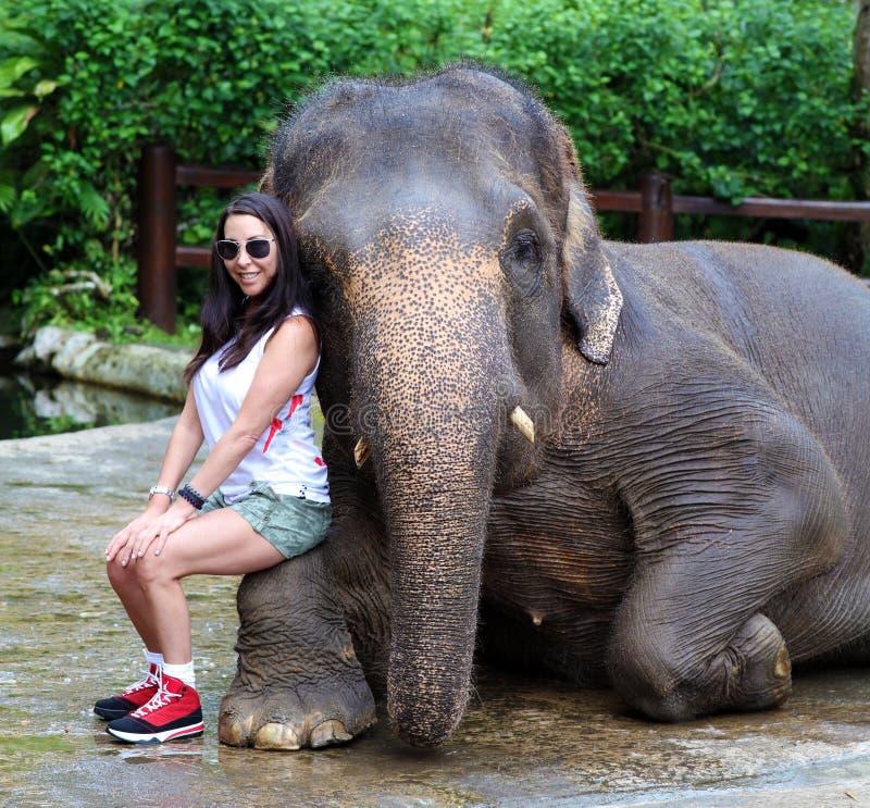 Den amerikanska flickan med den asiatiska elefanten på ett beskydd parkerar i Bali, Indonesien Härlig kvinnaturist fotografering för bildbyråer