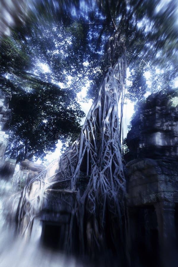 den angkorcambodia khmeren fördärvar wat arkivfoto