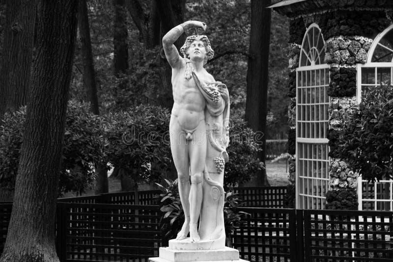 Den antika marmorstatyn i lägre Peterhof parkerar Aviariumpaviljong i de lägre trädgårdarna av Peterhof royaltyfria bilder