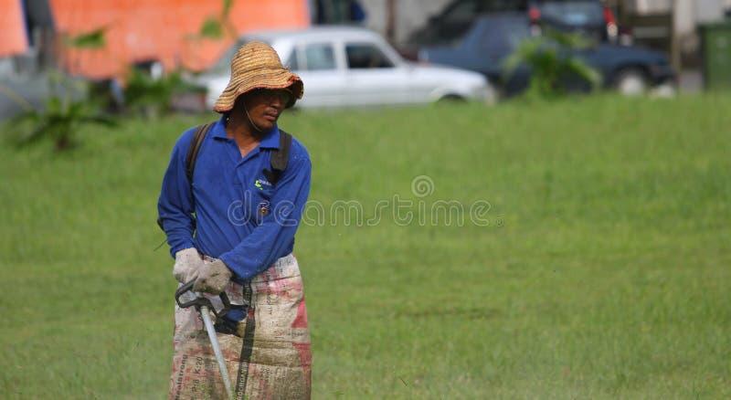 Den arbets- bilden av mannen använder en radgräsklippningsmaskin för att klippa gräs arkivbilder