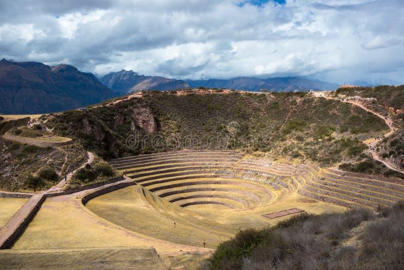 Den arkeologiska platsen på Moray, loppdestination i den Cusco regionen och den sakrala dalen, Peru Majestätiska koncentriska ter royaltyfria foton
