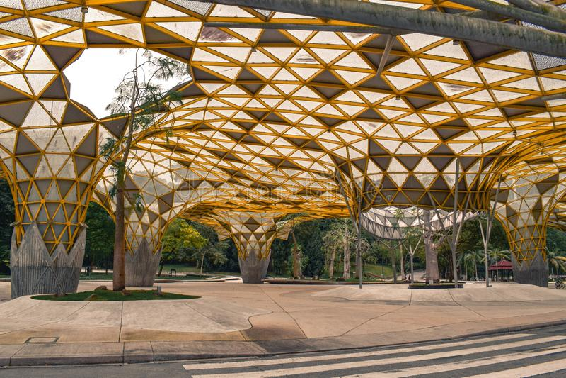 Den artsy gula räkningen i den Perdana botaniska trädgården i Kuala Lumpur Malaysia royaltyfria bilder