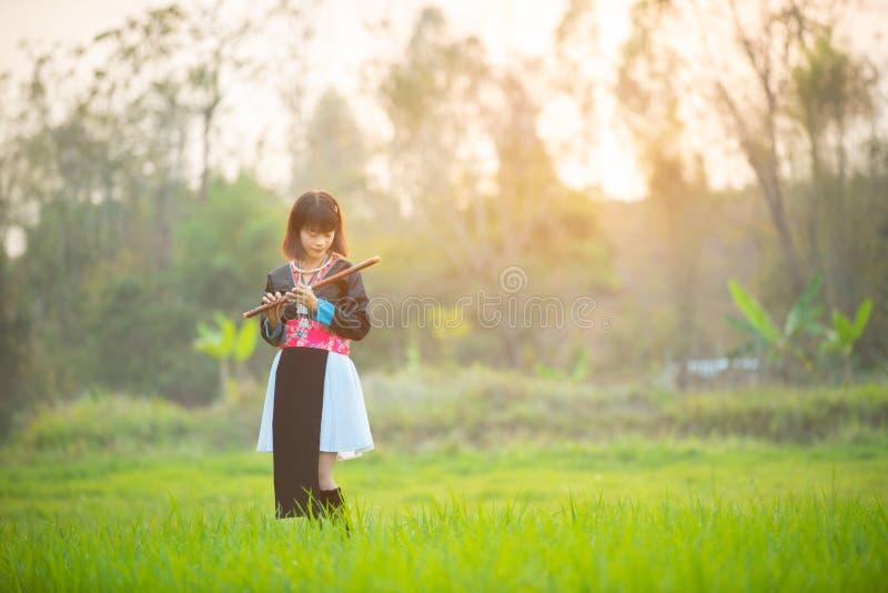 Den asiatiska kvinnan i stamegenklänning går i lek för risfältfältet eller risfältpå flöjten med den romantiska framsidan, proces royaltyfria bilder