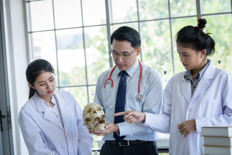 Den asiatiskt l?raren har undervisning till studenten om vetenskap och anatomiskt i laboratorium fotografering för bildbyråer