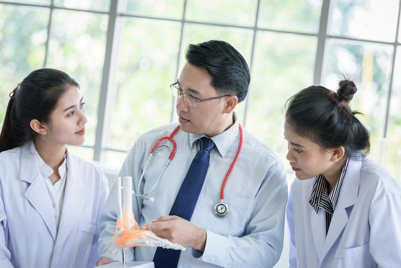 Den asiatiskt l?raren har undervisning till studenten om vetenskap och anatomiskt i laboratorium royaltyfri foto