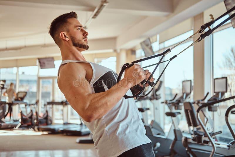 Den attraktiva kraftiga kroppsbyggaren gör övningar på den utbildande apparaturen fotografering för bildbyråer