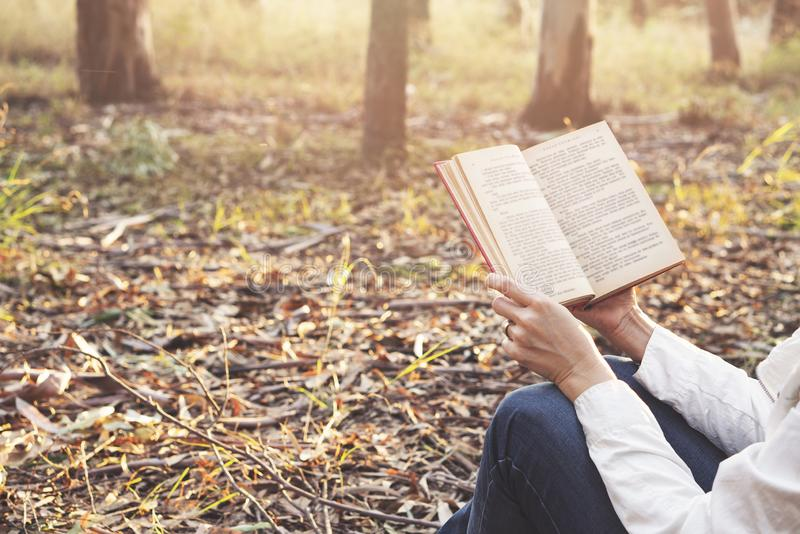 Den attraktiva kvinnan är läseboken i natur arkivfoto