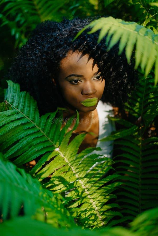 Den attraktiva nätta afrikanska flickan med gröna ögonskuggor och läppstift omges av gröna ormbunkar Ingen blick in camera royaltyfria foton
