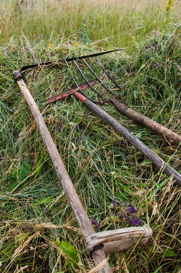 Den autentiska gamla högaffeln, krattar och gräsklippningsmaskinen i fältet royaltyfri foto