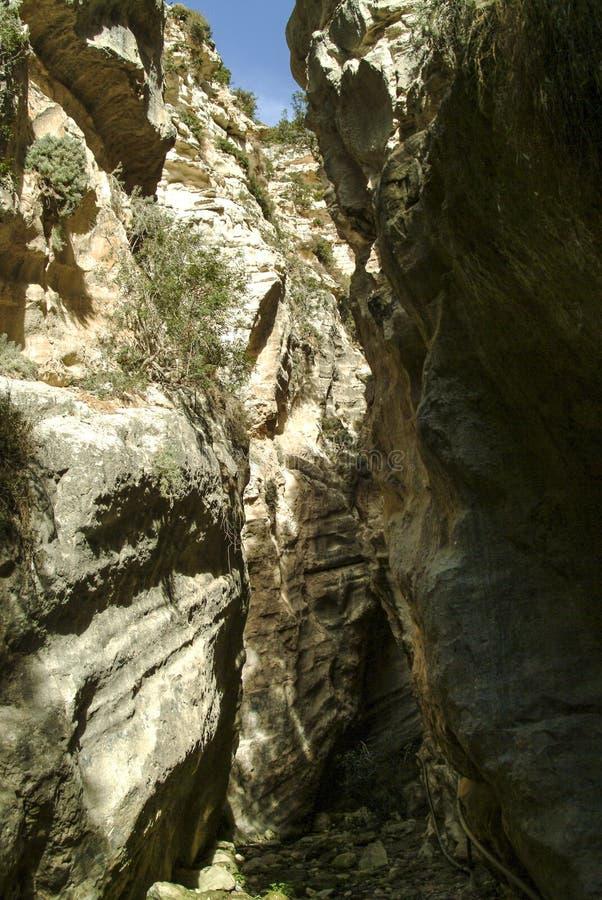 Den Avakas klyftan i den medelhavs- ön av Cypern royaltyfri foto