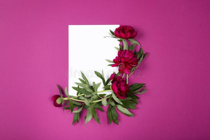 Den bästa sikten av arket av papper med pioner blommar på rosa bakgrund med kopieringsutrymme royaltyfria bilder