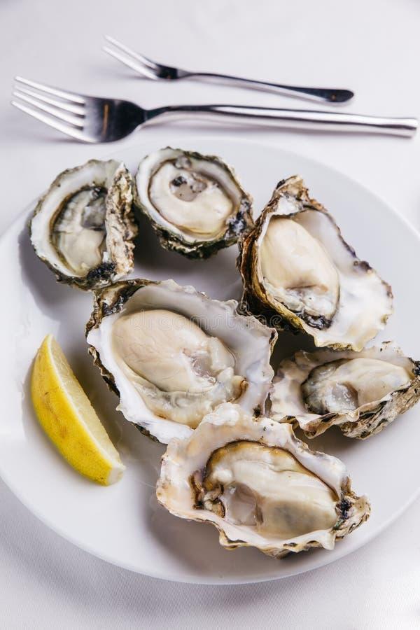 Den bästa sikten av nya ostron tjänade som i den vita plattan med skivat av citronen på den vita bordduken royaltyfria foton