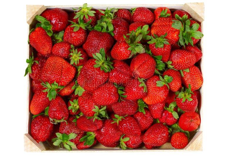 Den bästa sikten av smakliga spanska jordgubbar samlade nytt på en träask arkivfoton