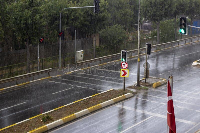 Den b?sta sikten av regndroppen avverkar p? jordningen royaltyfri foto