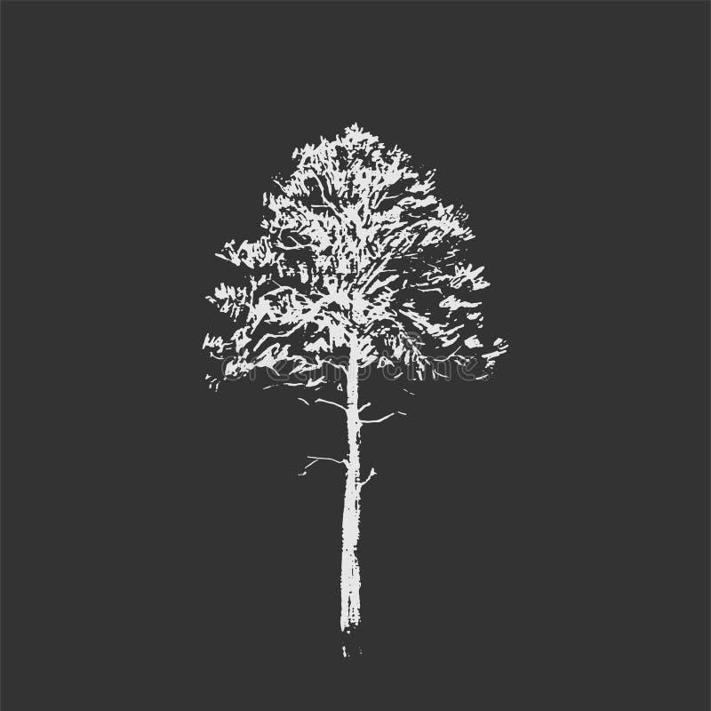 den bakgrundsbaikal laken sörjer treen Linje teckning som isoleras på mörker - grå bakgrund Den tecknade handen skissar också vek stock illustrationer