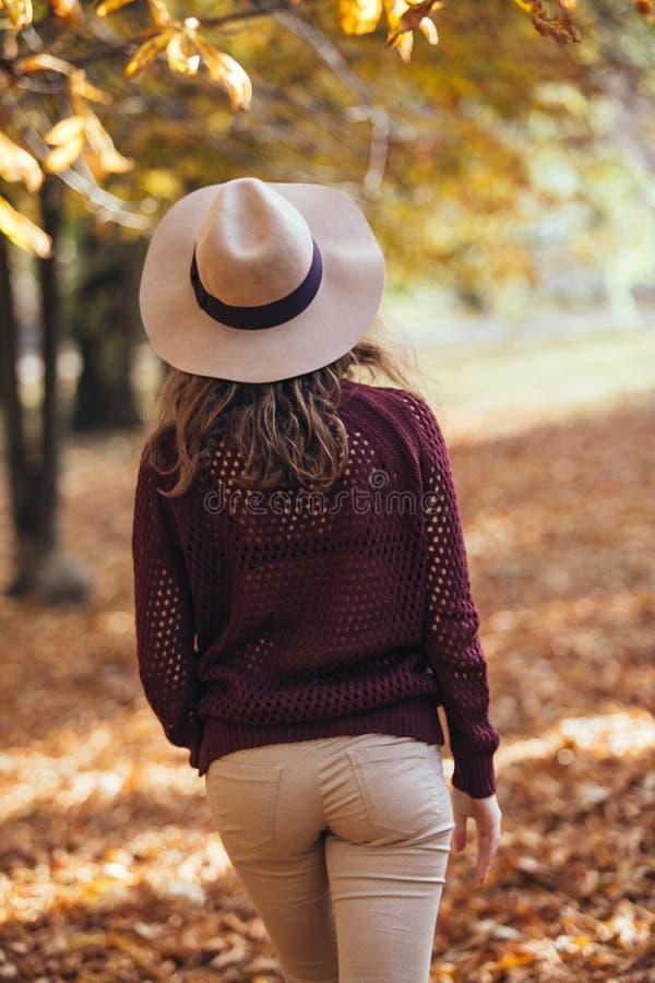 Den bakre sikten av brunettflickan i höstnedgång parkerar i brun hatt, tröja och byxa Tillbaka sikt av höstståenden av kvinnan arkivfoton