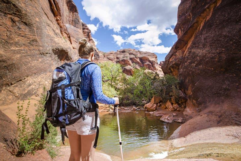 Den bakre sikten av en kvinna som fotvandrar till en vattenfall i ett rött, vaggar kanjonen royaltyfria foton