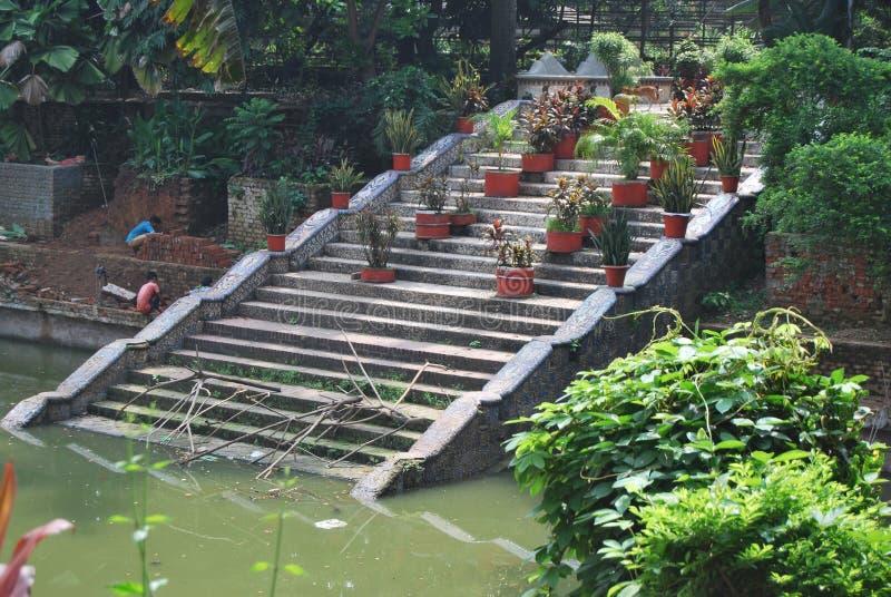 Den Baldha trädgården är en av de äldsta botaniska trädgårdarna i Bangladesh Trädgården berikas med sällsynt växtart som samlas f royaltyfria foton