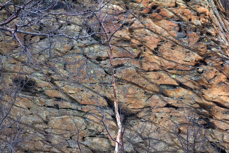 den basaltiska bilden vaggar royaltyfria bilder