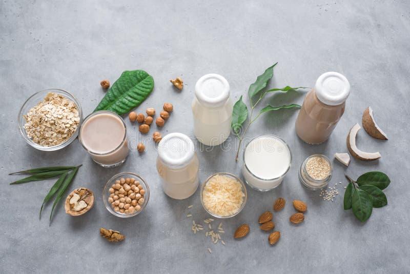 Den baserade olika växten mjölkar royaltyfria foton