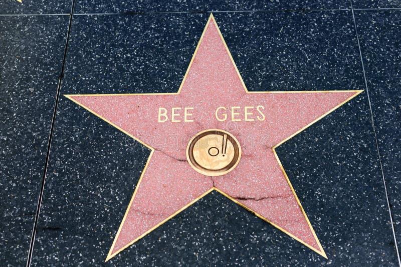 Den Bee Gees stjärnan på Hollywood går av berömmelse royaltyfri bild