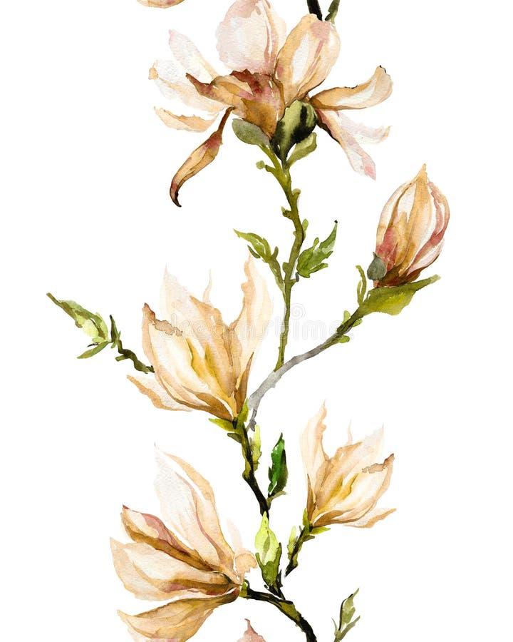 Den beigea magnolian blommar på en fatta på vit bakgrund Sömlöst p stock illustrationer