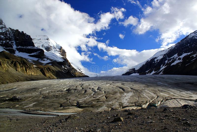Den berömda Athabascaen Galcier/Columbia Icefield i Alberta/British Columbia - Kanada royaltyfria foton