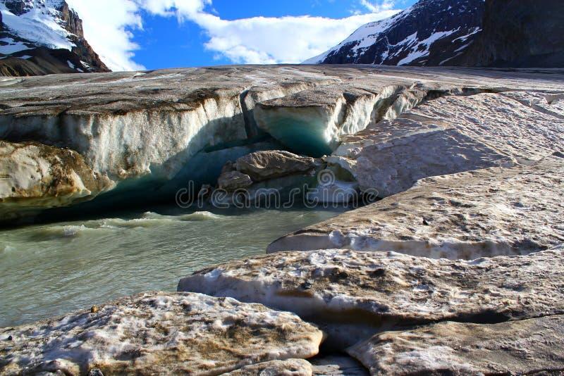 Den berömda Athabascaen Galcier/Columbia Icefield i Alberta/British Columbia - Kanada arkivbild