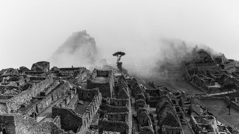 Den berömda incaen fördärvar av machupicchu i Peru arkivfoto