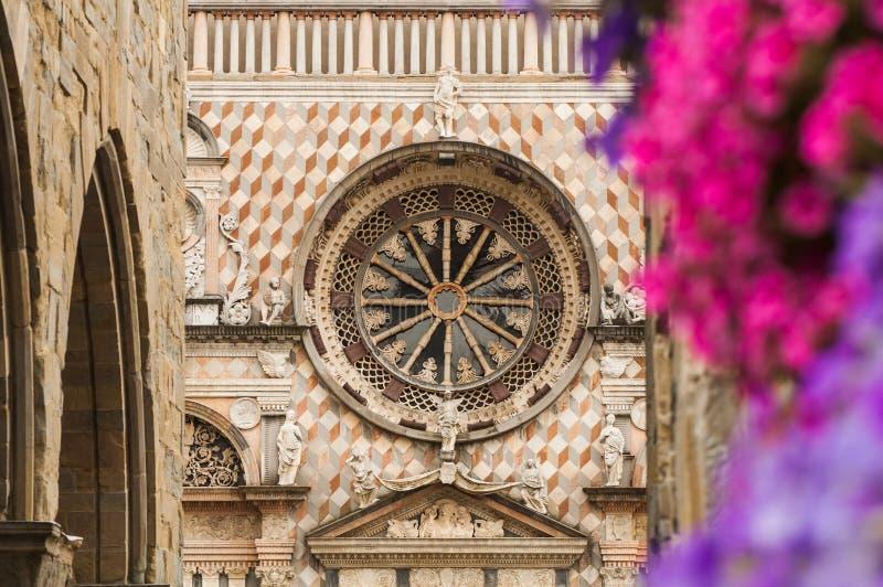 Den Bergamo domkyrkan steg fönstret och blommor arkivfoto