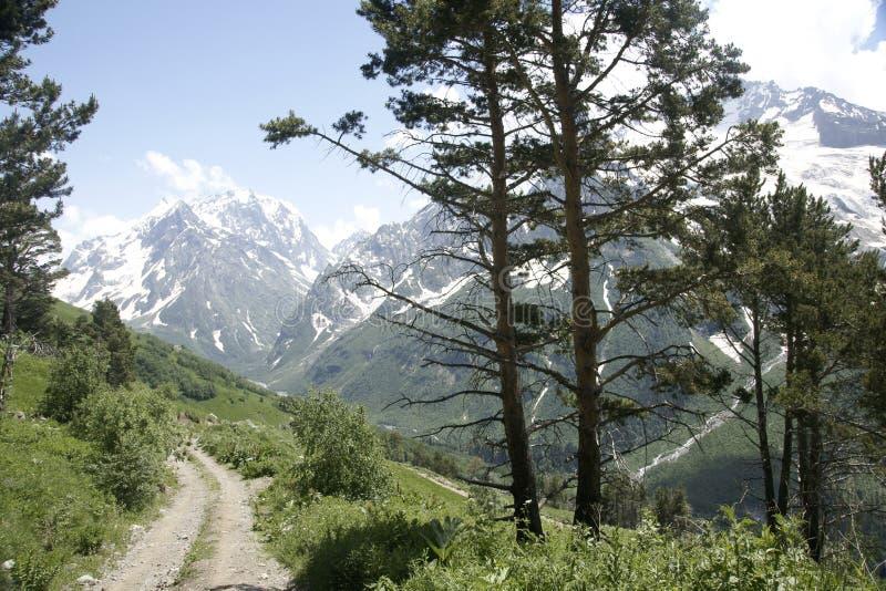 In den Bergen auf Dombai lizenzfreies stockbild