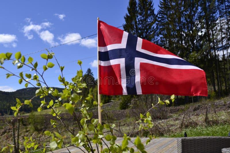 den blåa flaggan gjorde norsk röd vektorwhite royaltyfria foton
