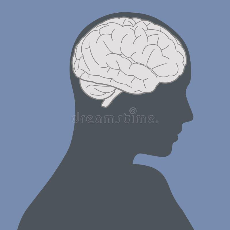 Den blåa kvinnaframsidakonturn och hjärnan avbildar vektorillustrationen royaltyfri illustrationer
