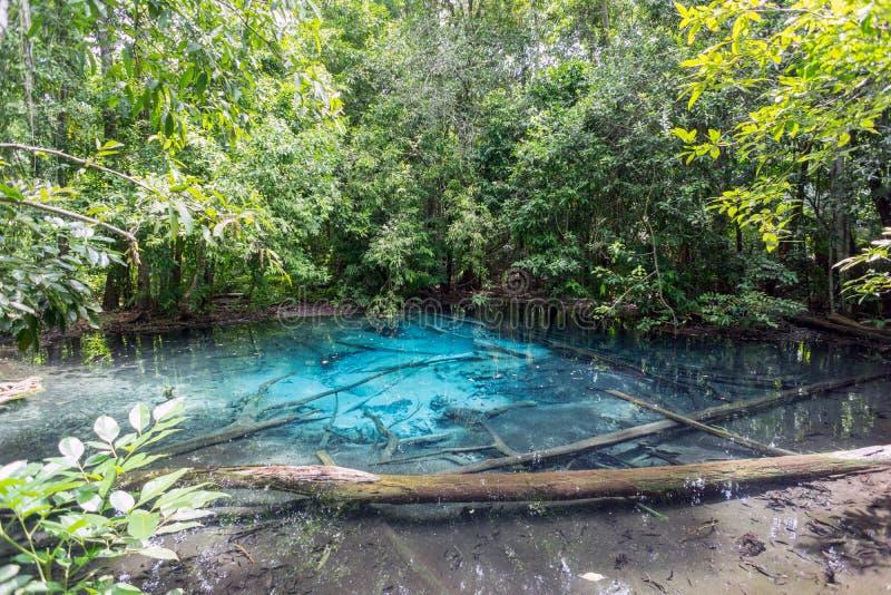 Den blåa lagun i Krabi, Thailand, berömd destination för turistdel av närliggande Emerald Pool arkivbild