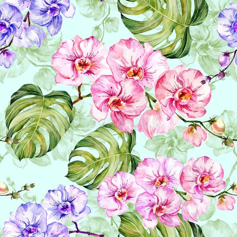Den blåa och rosa orkidén blommar med översikter och stora gröna monsterasidor på ljus - blå bakgrund seamless modell royaltyfri illustrationer