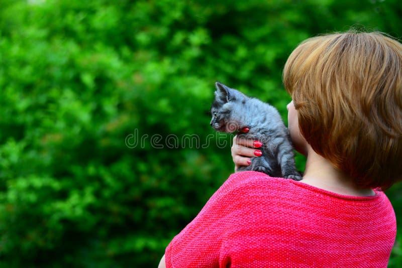 den blåa skotska kattungen sitter på woman& x27; s-skuldra utomhus royaltyfri fotografi