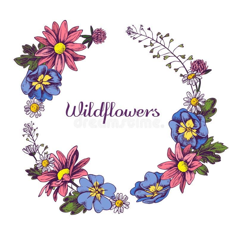 Den blom- kransen av vildblommor räcker utdragen vektorillustation vektor illustrationer