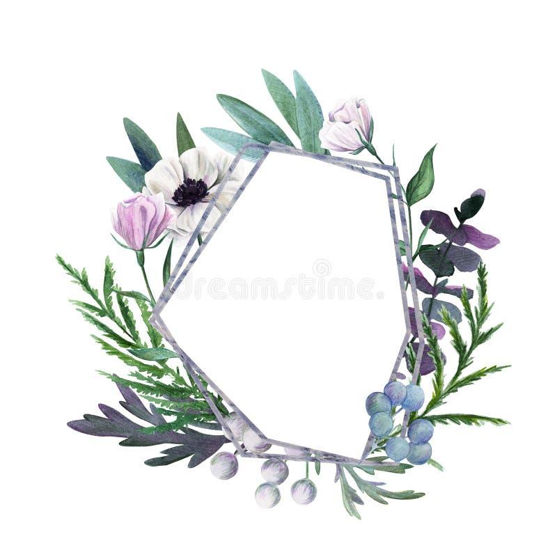 den blom- ramen inramniner serie Dragen botanisk hand för vattenfärg stock illustrationer