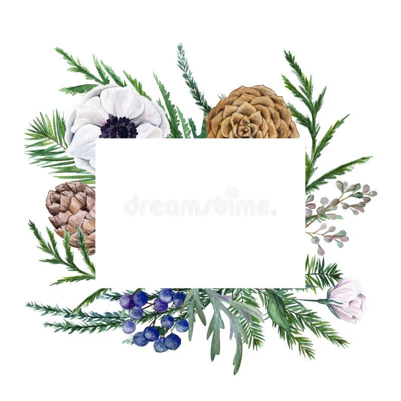 den blom- ramen inramniner serie Dragen botanisk hand för vattenfärg vektor illustrationer