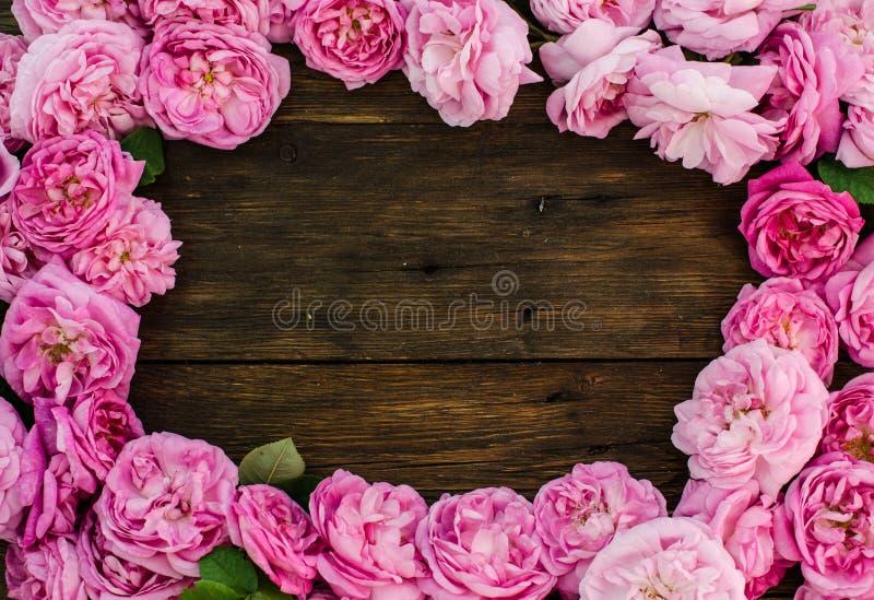 Den blom- ramen med rosa färgrosen blommar på wood bakgrund Ställe för text, bästa sikt royaltyfria foton