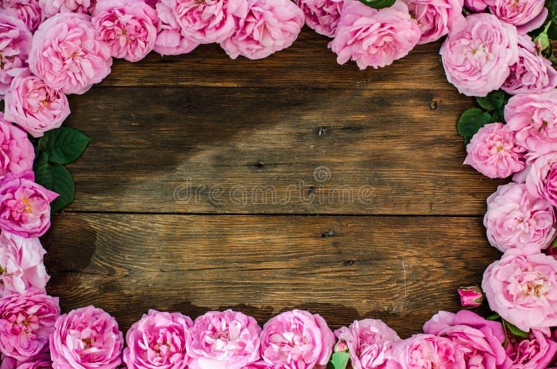 Den blom- ramen med rosa färgrosen blommar på wood bakgrund Ställe för text, bästa sikt arkivfoto