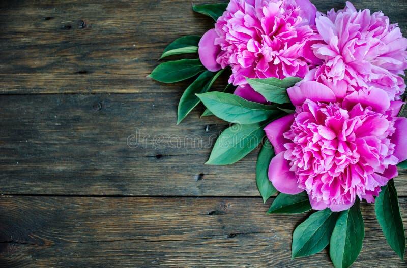 Den blom- ramen med rosa pioner blommar på wood bakgrund Selektiv fokus, ställe för text, bästa sikt royaltyfria bilder