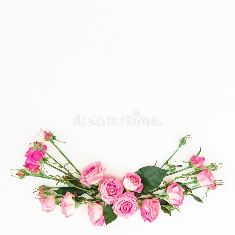 Den blom- ramen som göras av rosor, blommar med kopieringsutrymme Fjädra sammansättning med rosa rosor på vit bakgrund Top beskåd fotografering för bildbyråer