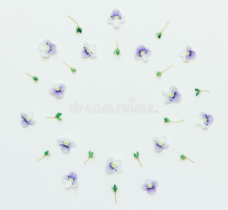 Den blom- runda ramen av små blått blommar på en vit bakgrund med utrymme för text royaltyfri illustrationer