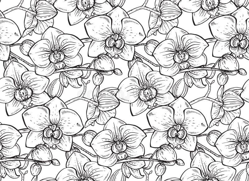 Den blom- sömlösa modellen med handen drog orkidén blommar royaltyfri illustrationer