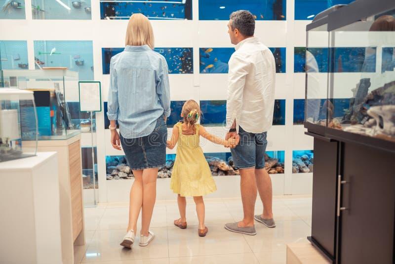 Den blonda dottern som rymmer föräldrar, räcker och ser fiskar royaltyfria bilder