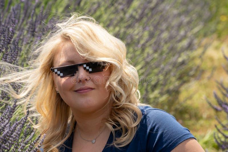 Den blonda för banditliv för vuxen kvinna bärande solglasögon sitter i ett fält av lavendel som ser självbelåtet royaltyfria bilder
