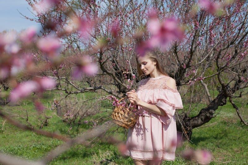 Den blonda flickan i rosa färgklänning samlar blommor i trädgården fotografering för bildbyråer